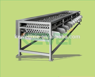 Roller garlic / apple sorting machine