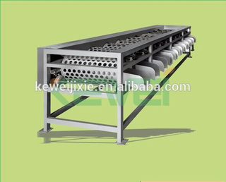 Pomegranate fruit sorting / Oval shape fruits size level grading machine